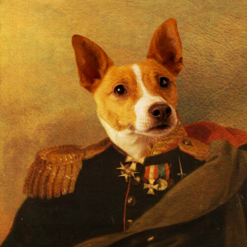 Welsh Corgi Royal Portrait