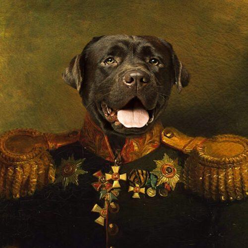Black Labrador Retriever Royal Portrait