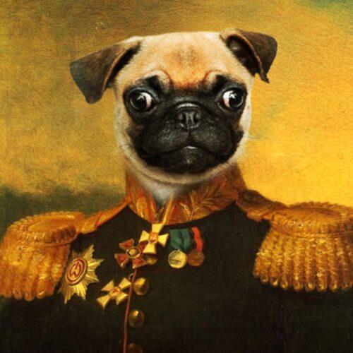 Pug Royal Pet Portrait