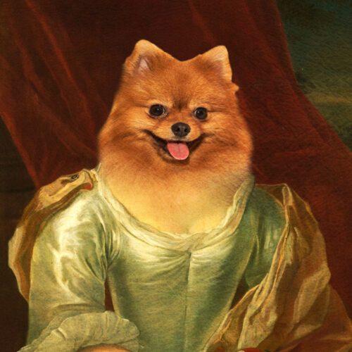 Pomeranian Royal Pet Portrait