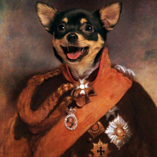 Chihuahua Royal Portrait