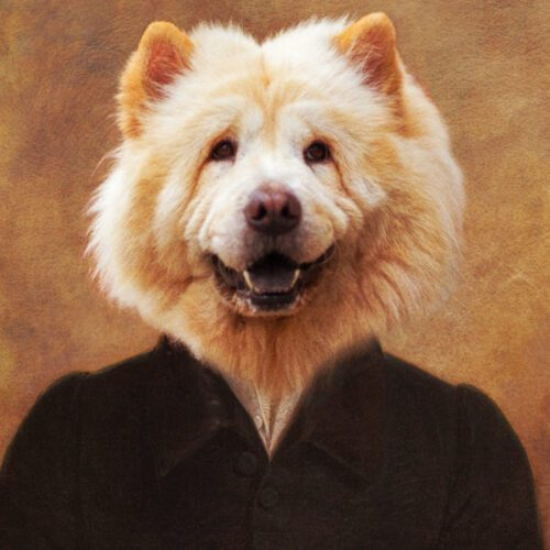 Chowchow Royal Portrait