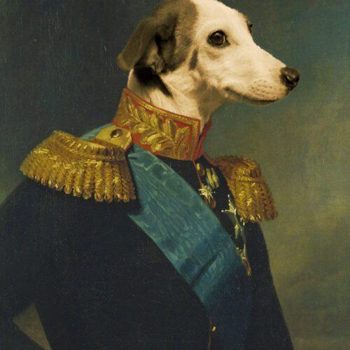 Labrador Royal Portrait