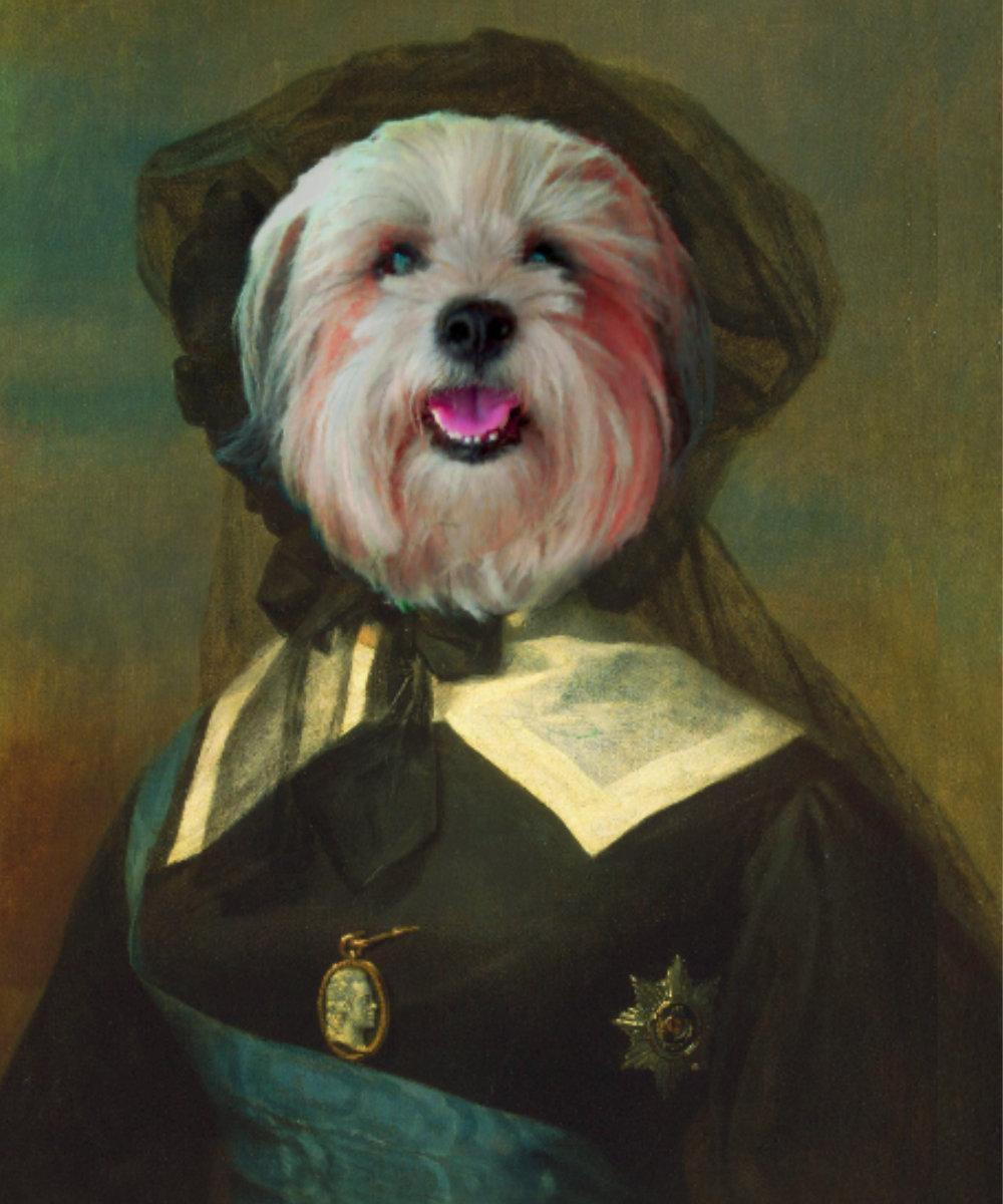 Havanese Royal Portrait